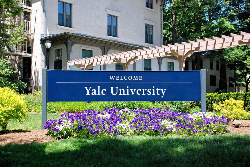 application process yale jackson institute for global affairs