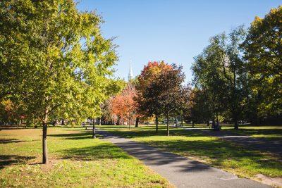 New Haven Green Thumbnail