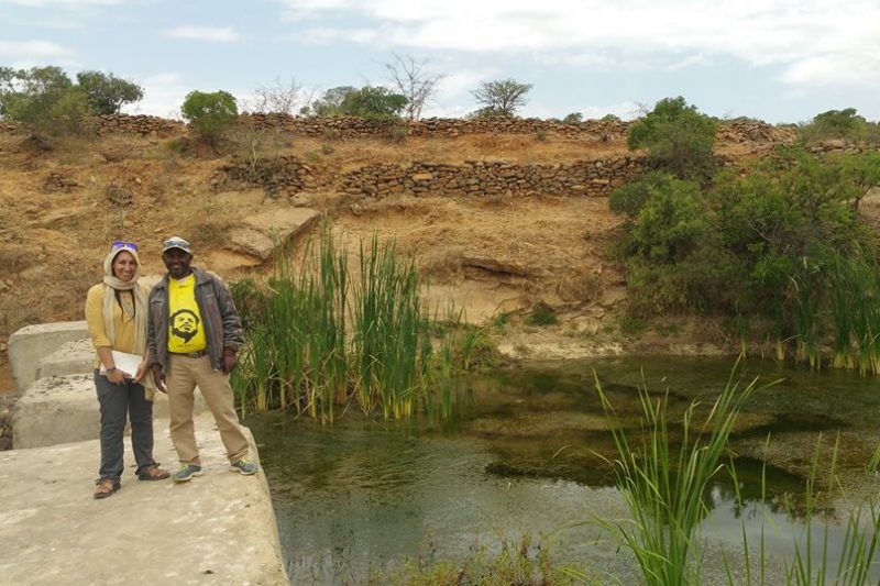Land Restoration and Food Security in Ethiopia Thumbnail